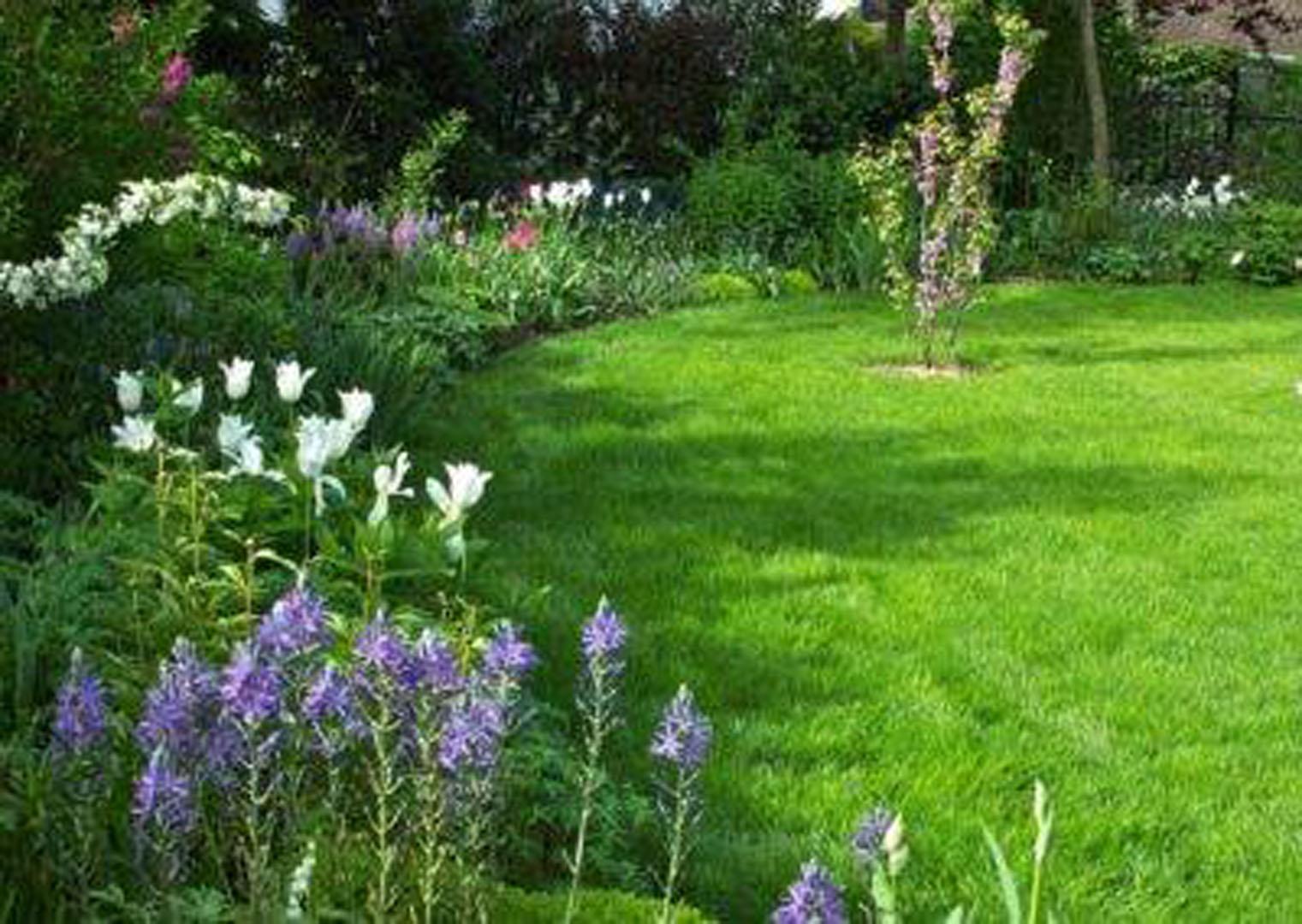 Dessine-moi mon jardin